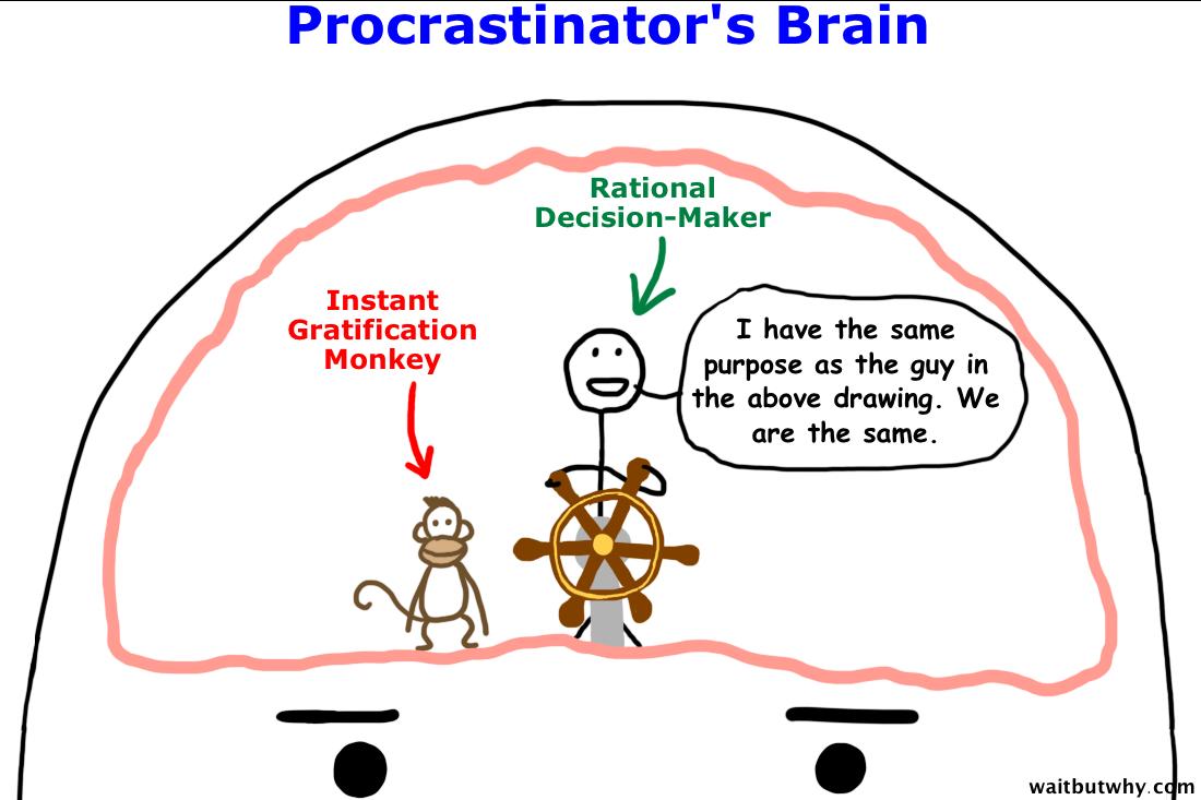p-brain